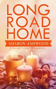 Book Cover: Long Road Home